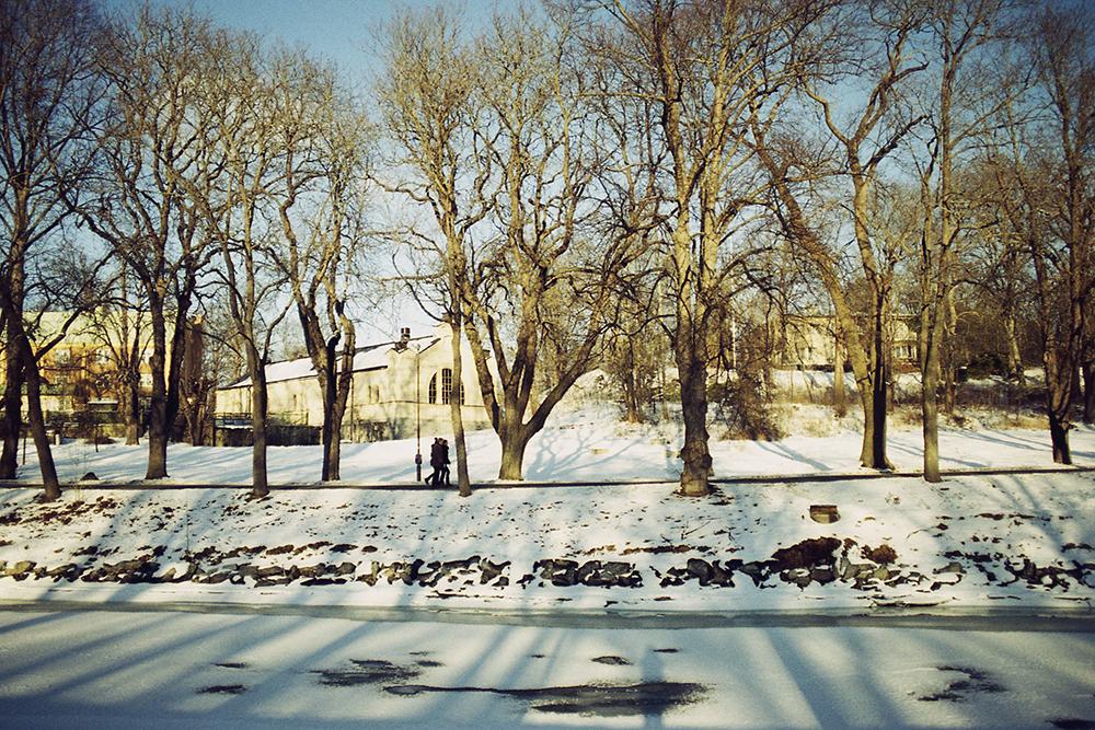 djurgården winter walk