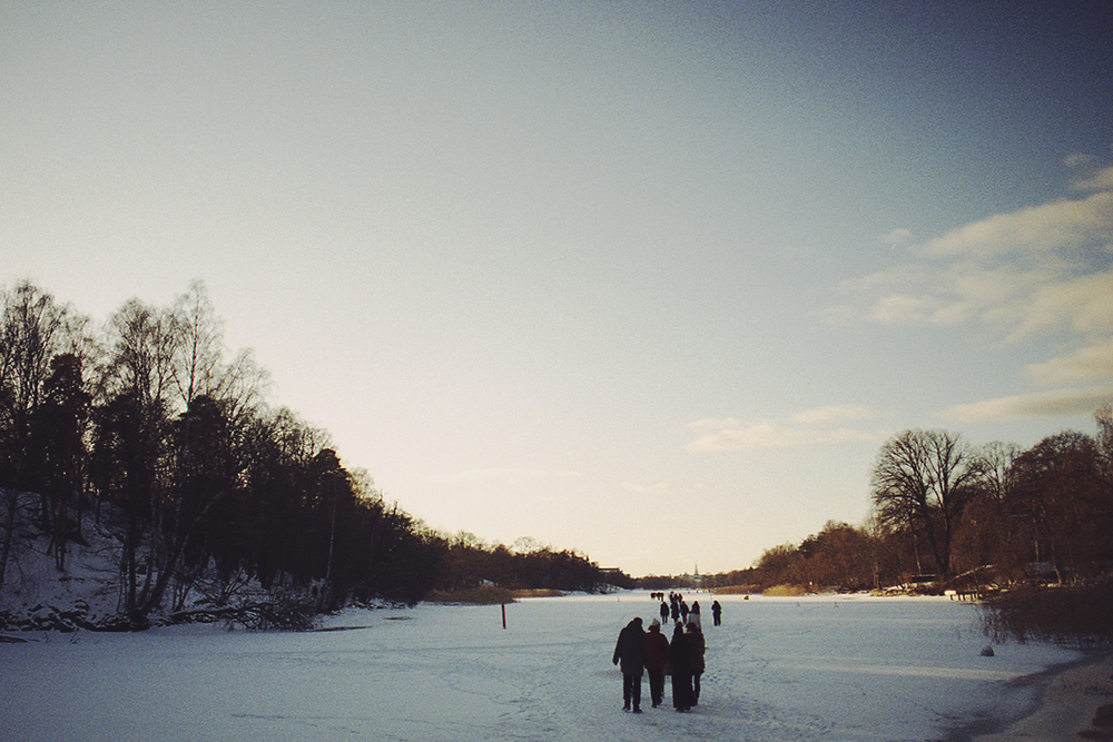 lake and forent in winter stockholm