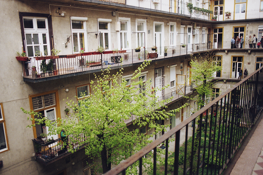trees in budapest courtyard