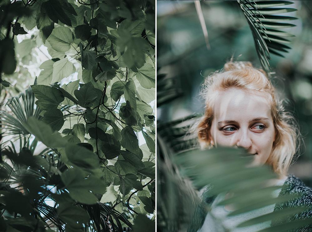 palmiarnia portret liście