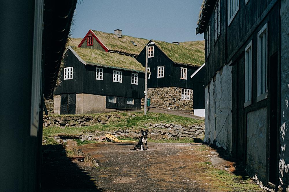 mykines wioska wyspy owcze
